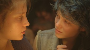 Blue Is the Warmest Colour (2013)                                                          NOW ON DVD/BLU