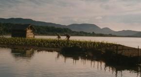 Corn Island (2014) Simindis kundzuli  | BFI London Film Festival | Oscars 2015