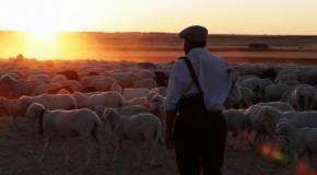 The Shepherd | El Pastor (2016)